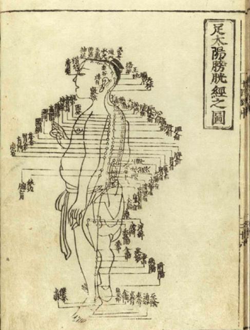 Incontinencia y Medicina Tradicional China